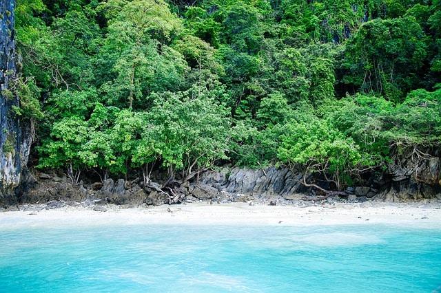 Playa El Frontón República Dominicana